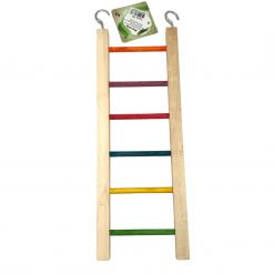 Coloured Rung Ladder – 30cm Small – Famember