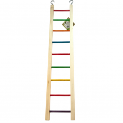 Coloured Rung Ladder – 63cm Large – Famamber