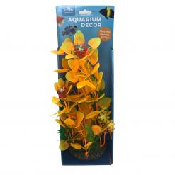 Ornamental Aquarium Plants