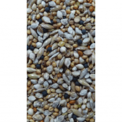 Budgie Seed Mix