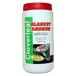 Blanket Answer - 800g - Cloverleaf