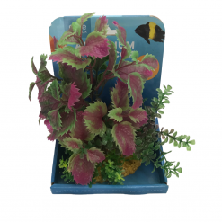 Decorative Ornamental Plant - Pink and Green - 15cm - Allpet - #50