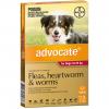 Advocate - Dog 10-25kg - 3 Pack