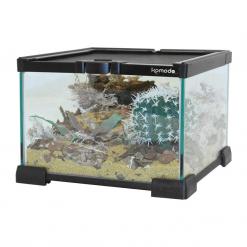 Glass Nano Habitat - 21 x 21 x 15cm - Komodo