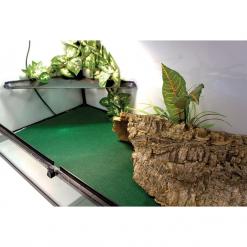 Reptile Carpet - Displayed