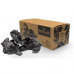 Black Seiryu Rock - Bioscape