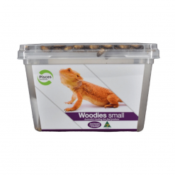 Live Woodies - Small - Pisces