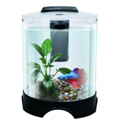 Round Desktop Betta Tank - Pisces
