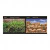 Seaview Aquarium Background 1230cm Tropical TerrariumDesert Sky