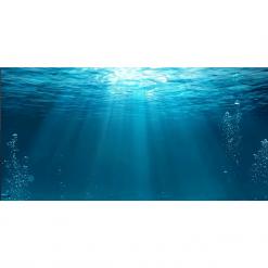 Aqua Natural Aquarium Background 'Underwater'