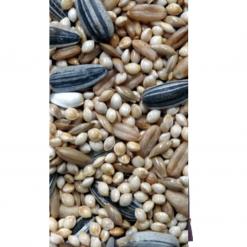 Avigrain Peachface and Cockatiel Seed Mix