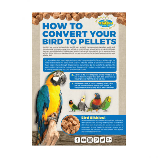 How To Convert Your Bird To Pellets